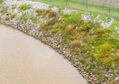 Bird Creek Bank Stabilization